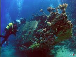 Онлайн фильмы подводный мир 7