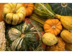 Овощи фотографии