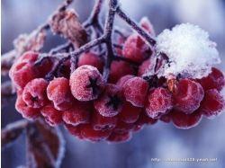Картинки зима февраль