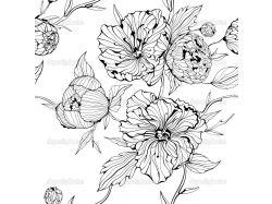 Векторные картинки цветы черно-белые