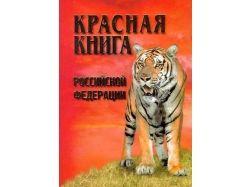 Картинки животные красной книги россии
