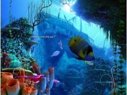 Книга подводный мир 3d