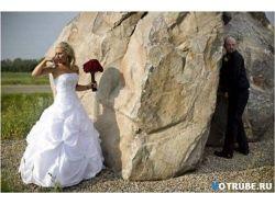 Курьезы на свадьбе фото