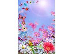Скачать рамки для фото цветы