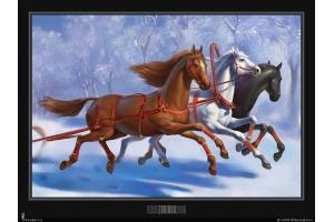 Открытки с лошадьми