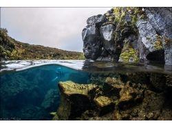 Обои подводный мир рифы подводные скалы